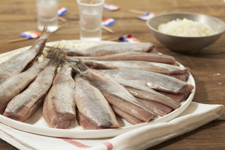 Home | Dutchfish nl